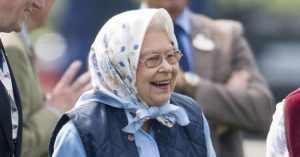 Даже королевы носят платки. Такой подарок будет в радость каждой бабушке.