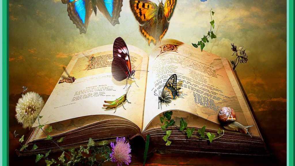 Книга про насекомых