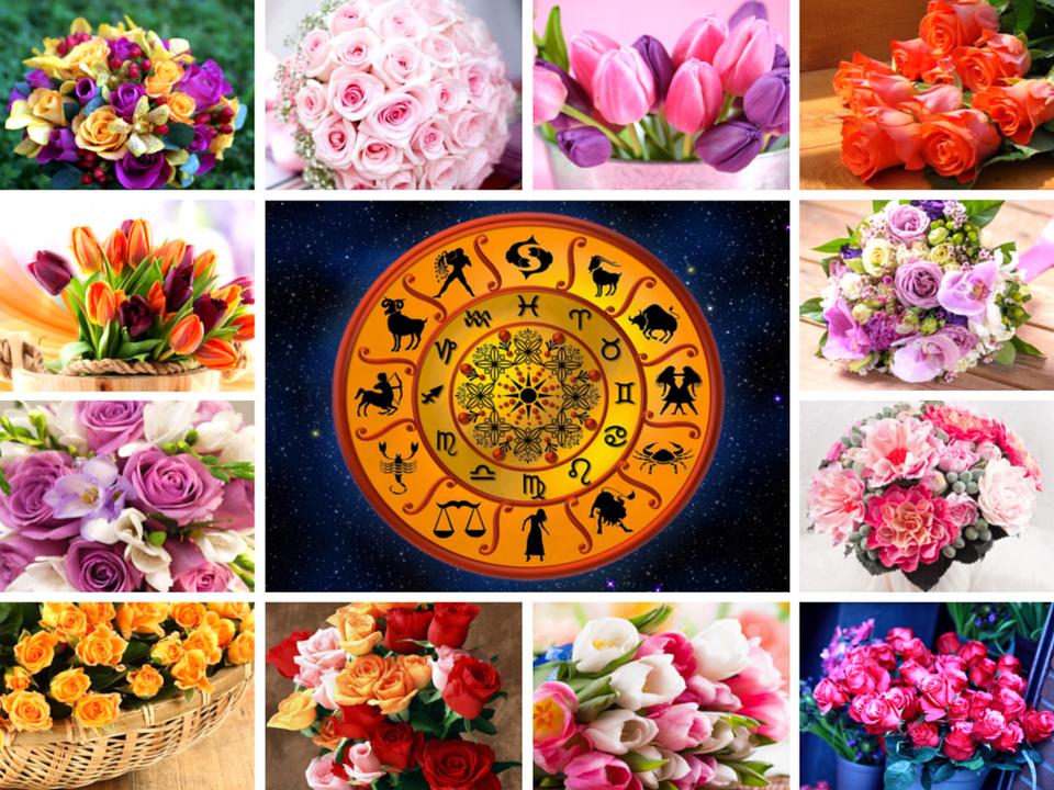 Цветы по знаку зодиака