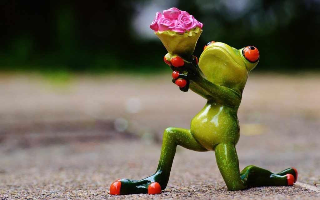 Подарком может стать и шуточная статуэтка-лягушка