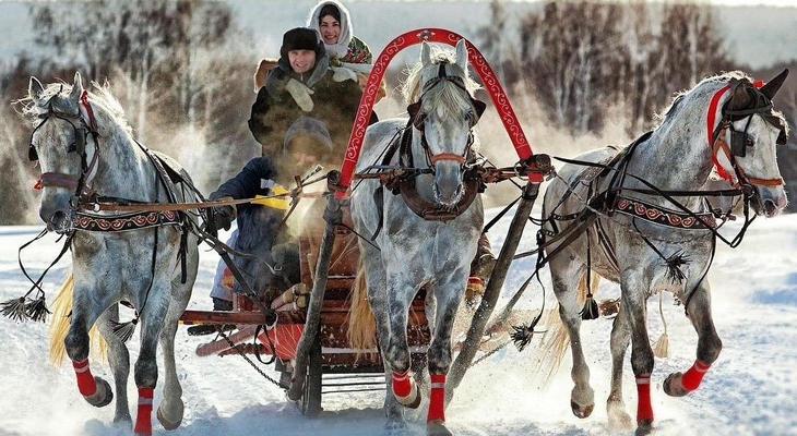 Катание на тройке лошадей в санях
