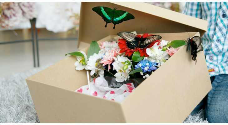 Бабочки в подарочной коробке